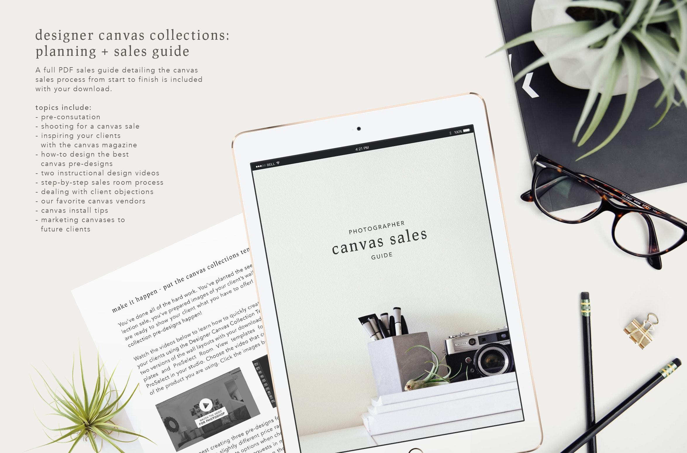 Canvas Sales Guide